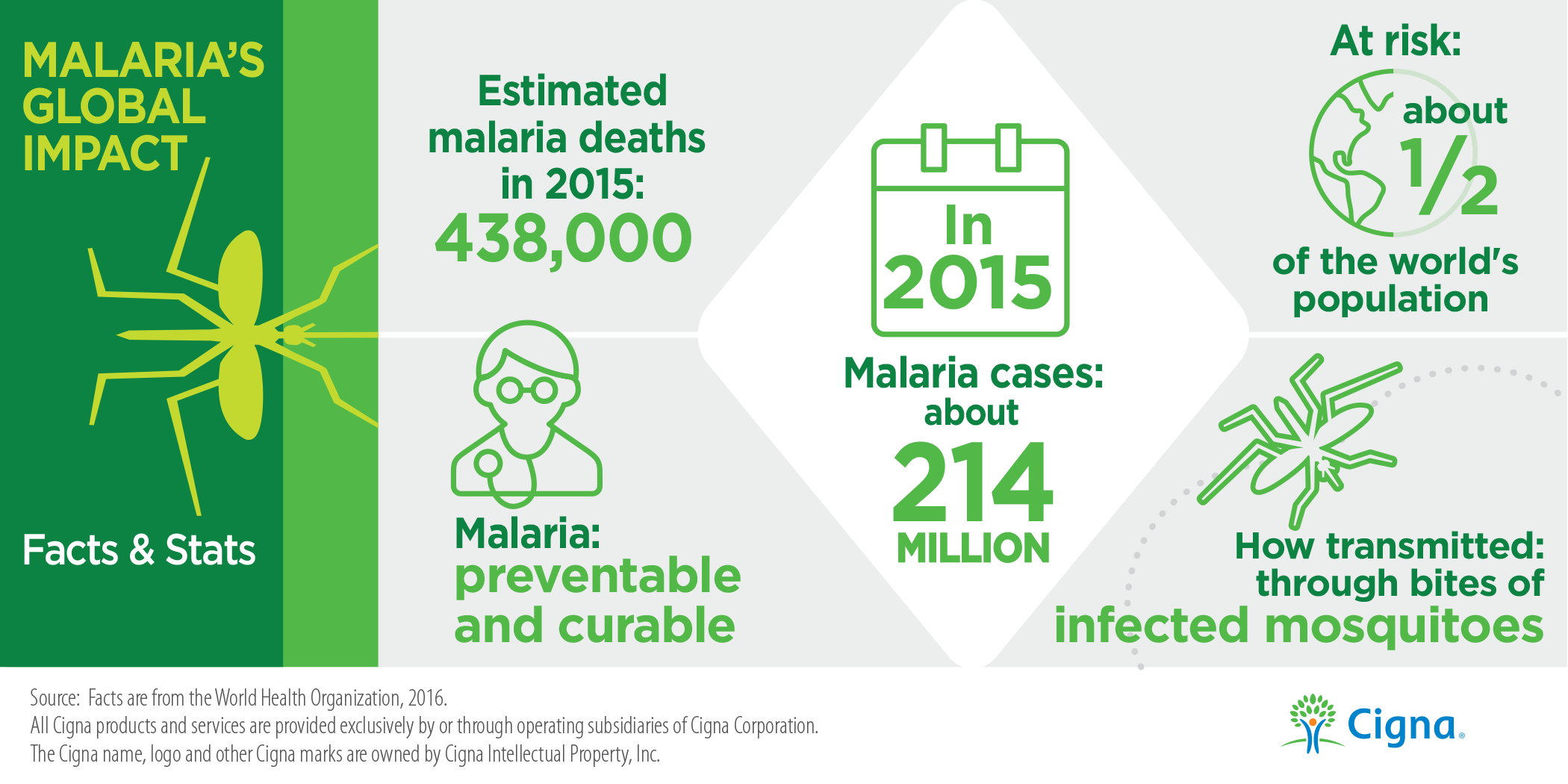 Malaria Facts Infographic