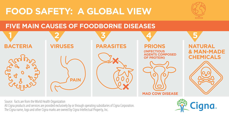 Food Safety Causes Infographic
