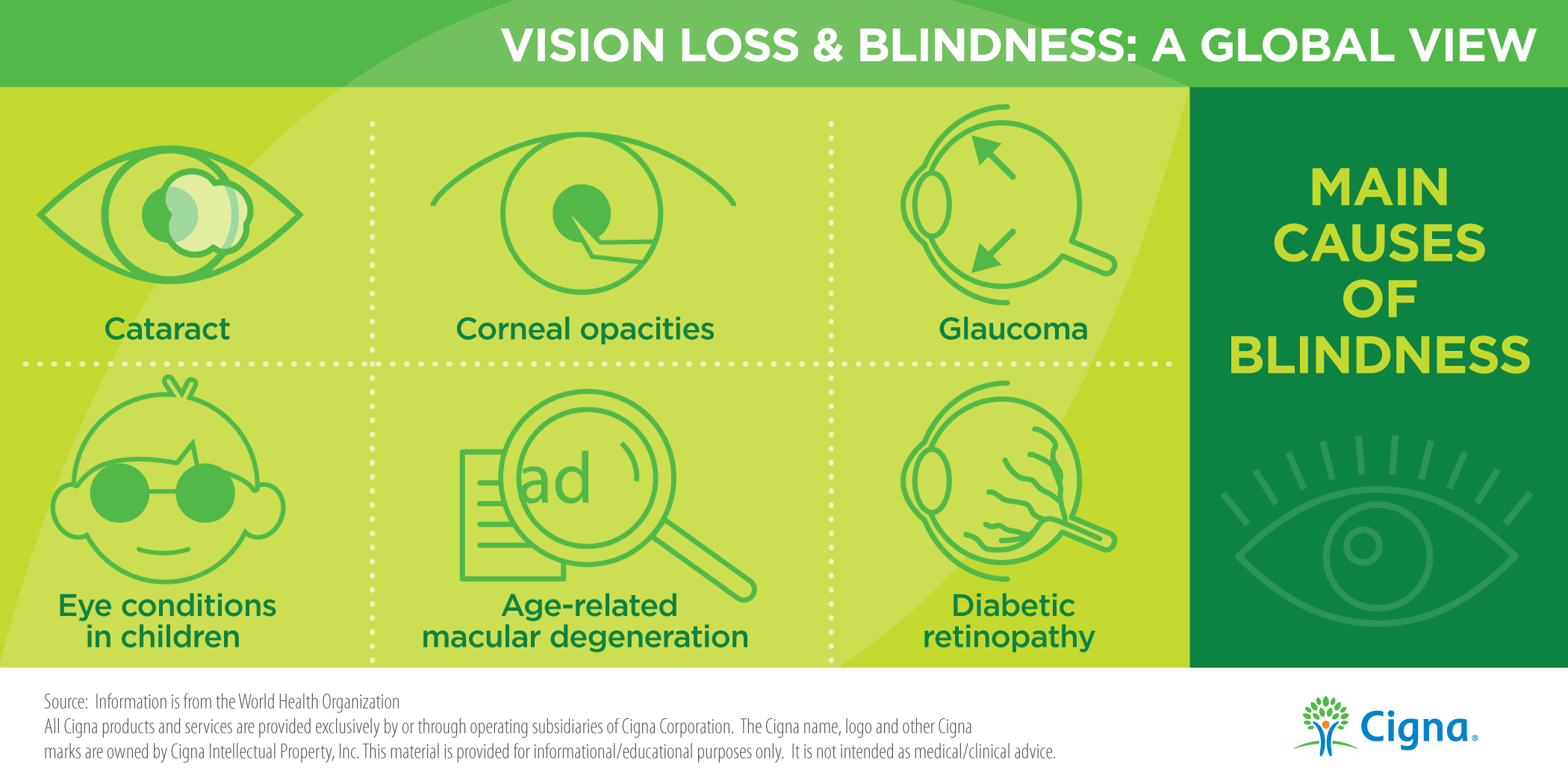 Main Causes of Blindness Infographic